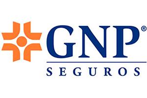 LogoGNP